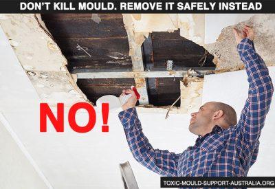 Toxic Mould Support Australia - Remove, don't kill mould